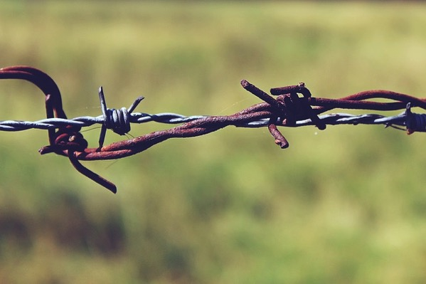 Barbed wire 887275 640